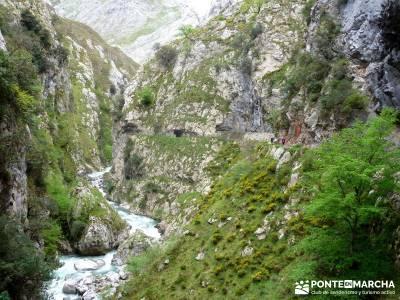 Ruta del Cares - Garganta Divina - Parque Nacional de los Picos de Europa;escapadas desde madrid